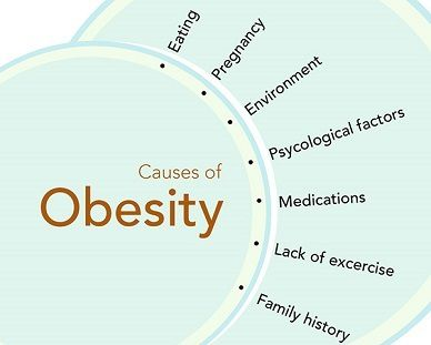 Obesity Causes Amp Treatments Saudi Arabia